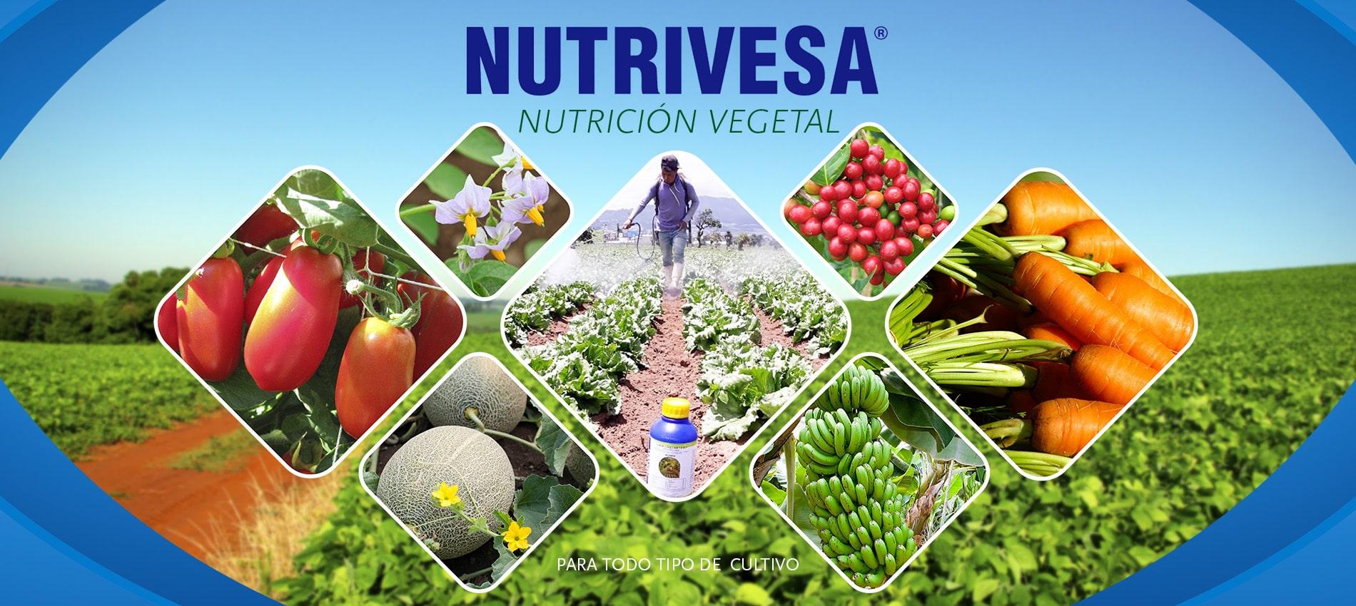 Nutrición Vegetal NUTRIVESA | Nutrivesa